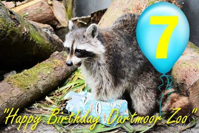 IT'S 7 YEARS OLD TODAY FOR DARTMOOR ZOO!<br />7th July 2014