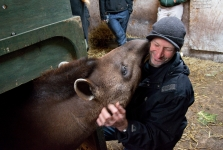 With Luta the tapir