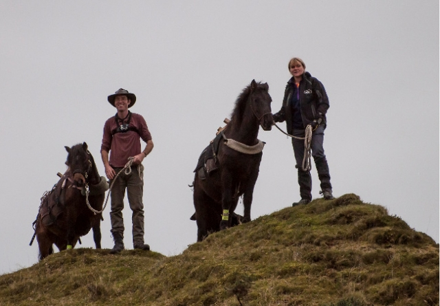 DARTMOOR PONY 100 MILE TREK <br />23rd October 2015