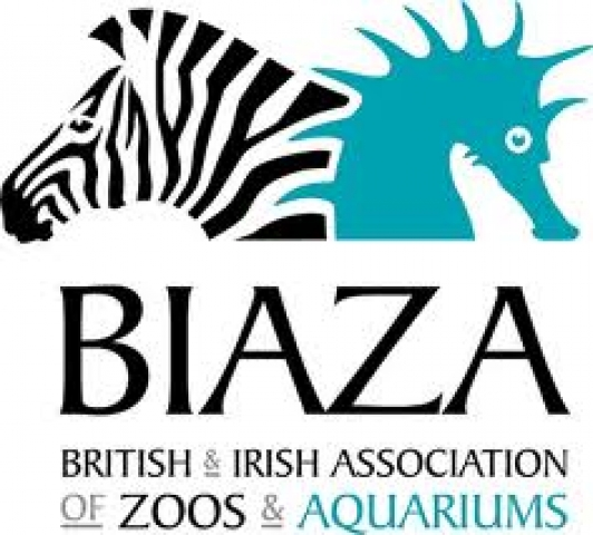 BENJAMIN JOINS THE BIAZA COMMUNICATIONS AND DEVELOPMENT COMMITTEE 27th March 2014